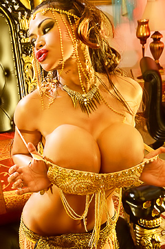 Armie Field - busty belly dancer