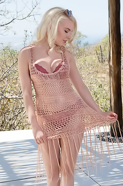 Blond Ali Claire In Sexy Fishnet Dress